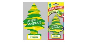ARBRE MAGIQUE DOUBLE ESSENCE GREEN FOREST & BERGAMOT